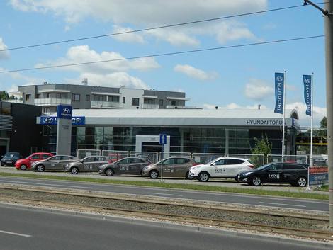 SMH Toruń firma